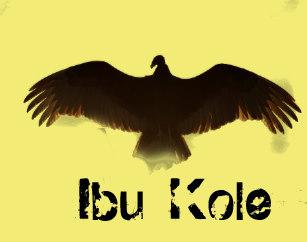 oshun_vulture_ibu_kole_top_by_tiko-rcd0c0c055de641d68db26e0c6f57589f_k21vw_307.jpg